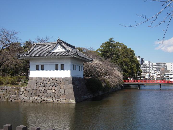 小田原城お堀 池の水全部抜く 決定